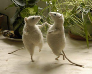 Mouse Dance
