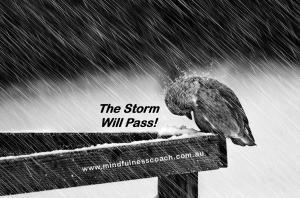 1Storm Will Pass